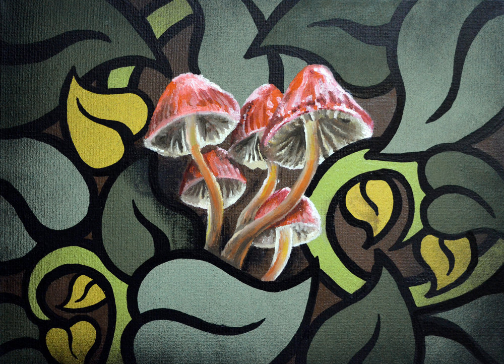 The Shrooms